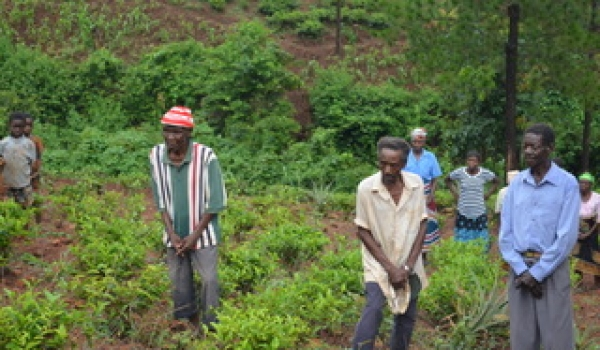 MULANJE SCTP BENEFICIARIES START FARMING